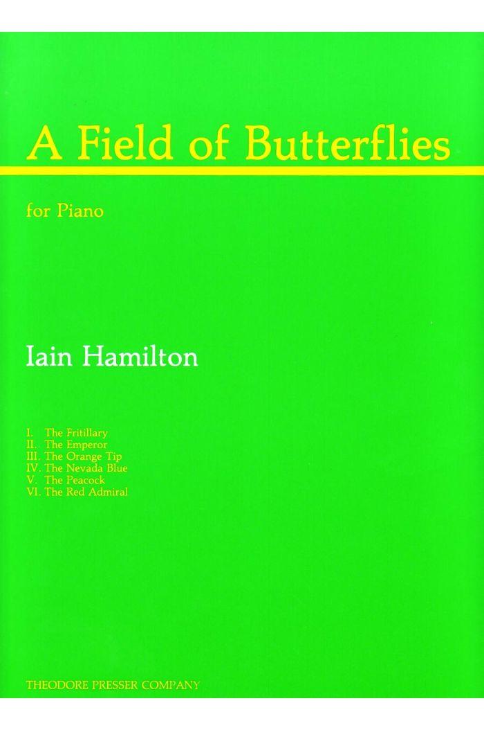 A Field Of Butterflies